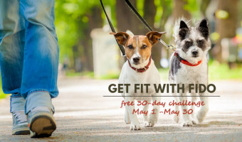 Get FIT with Fido May Challenge