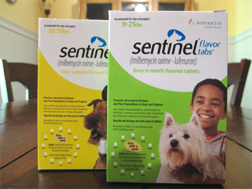 More Questions About Sentinel Flea And Heartworm Medication For Dogs