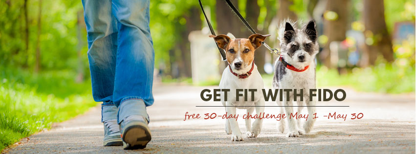 Get FIT with Fido